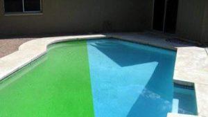 Limpeza de piscina verde